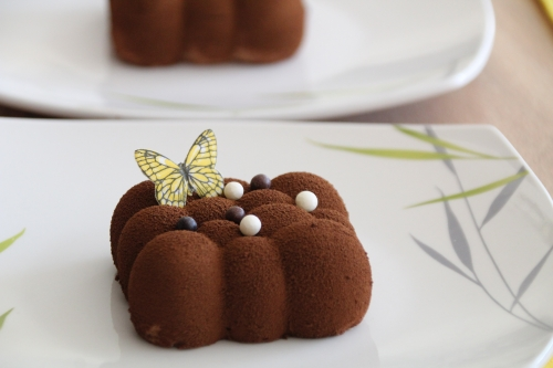 entremets, ganache praliné, chocolat caramel, dessert de fêtes